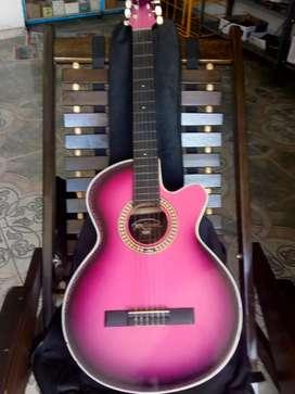 Vendo guitarra con estuche