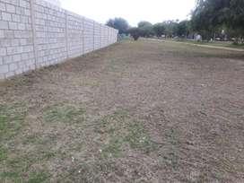 Vendo O Permuto Terreno en San Luis