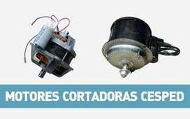 BOBINADO DE MOTORES. RECAMBIO EN EL DIA . BELGRANO 213 PADUA NORTE .
