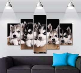 Cuadros Decorativos Perros