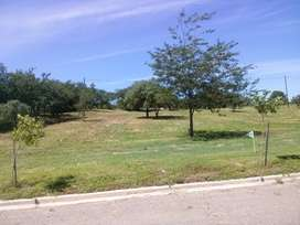 Terreno Tejas IV