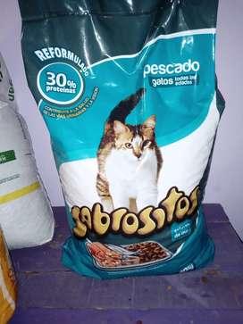 Alimento gatos