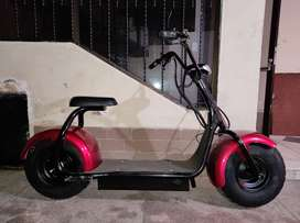 Scooter Eléctrico estilo citycoco