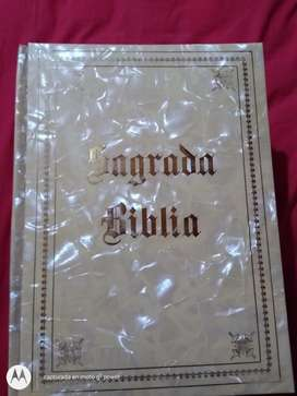 Biblia Sagrada Muy Antigua