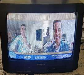 VENDO TV SANKEY 14
