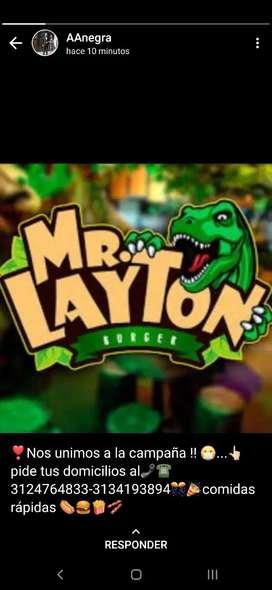 Franquicia MR. LAYTON