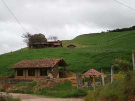 Venta de Finca Ganadera 20 hectareas en sector Tarqui, Cuenca, Azuay