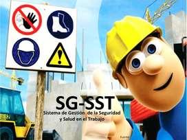 Doy apoyo para documentar SG-SST