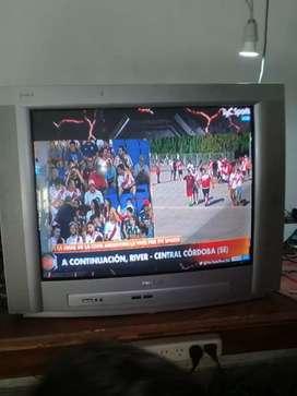 """vendo tv 29"""" con control"""