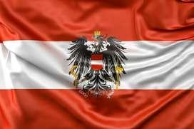Clases particulares/a domicilio de Alemán con Profe de Austria
