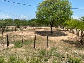 LOTE CAMPESTRE 800 mts 2 Guacoche Valledupar Cesar