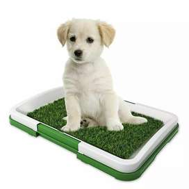 Baño tapete para perros - ENVÍO GRATIS