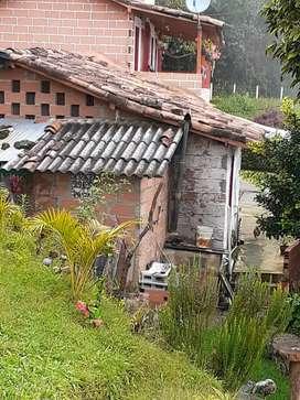 Finca Montebello