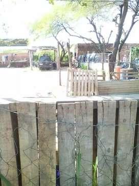 Terreno 10x25 limpio c/plantas