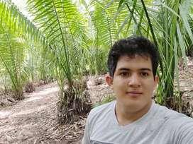 4 Hectáreas, En Morales con luz y agua