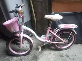 Bicicleta de ñiña