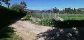 Venta de 1 hectárea de Terreno en Santiago Del Rey cerca de Ibarra Vía Yachay, cuenta por agua de riego.