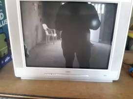 Tv 29 phillips pantalla planta