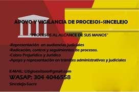 Servicios de Apoyo y vigilancia judicial-Sincelejo