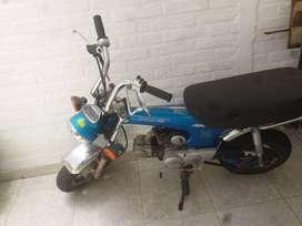 Honda dax 97
