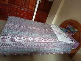 Se vende cama de plaza 1 1/2 + colchón Chaide