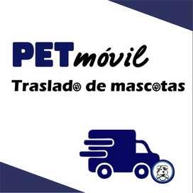 Traslado de mascotas en Bahía y zona