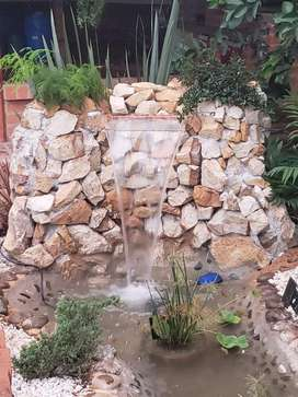Jardines Y Decoraciones 3136531715