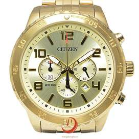 citizen an8132-58p