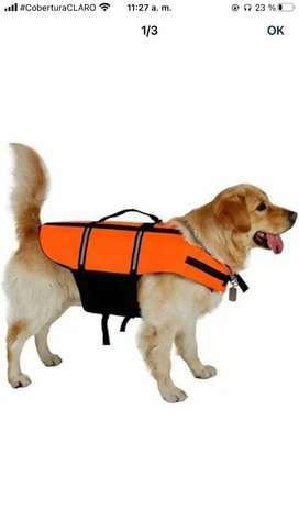 Flotador para perro. Pagas cuando recibes en tu casa