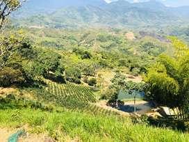 Vendo hermosa finca en la zona rural de Jamundí, Valle del Cauca
