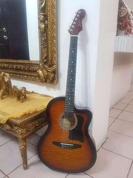 Guitarra Freedom poco uso