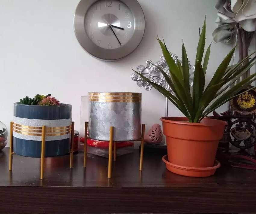 Maceteros Decorativos Plantas y Flores