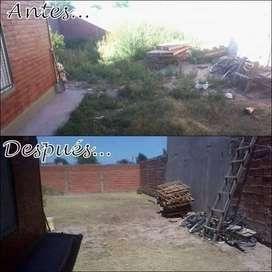 Corte , desmalezado y limpieza de patios