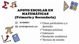 Profesora prepara alumnos en matemáticas
