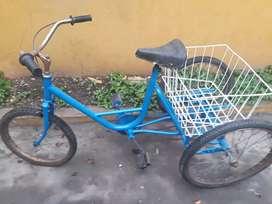 Triciclo olmo