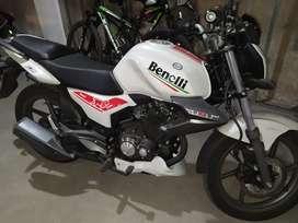 Benelli TNT15 nueva