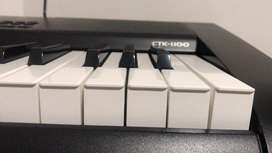 Vendo Piano Casio CTK 1100 En Perfecto Estado