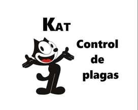 Trampas ratas Control plagas