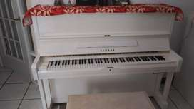 Piano Unico  Yamaha