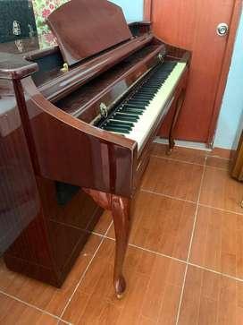 Piano Digital SUZUKI en OFERTA!!!