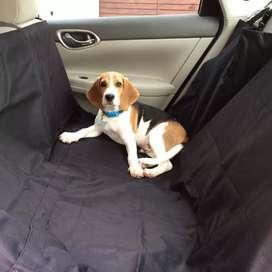 Protector silla carro para perros c
