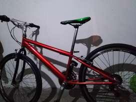 Se vende bicicleta GW Rally
