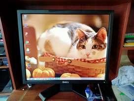 """Monitor Dell muy buen estado 19"""""""