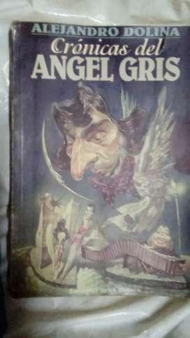 Libro CRONICA DEL ANGEL GRIS de Dolina Nuevo a estrenar LIQUIDO HOY