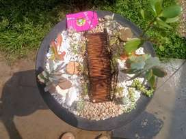Mini jardín en cuenco artesanal
