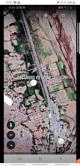 Vendo Terreno GRANDE en Juella a km de TILCARA