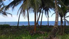 Lot for sale in the Panamanian Caribbean riviera, two hectares. Major cryptos accepted as partial payment.