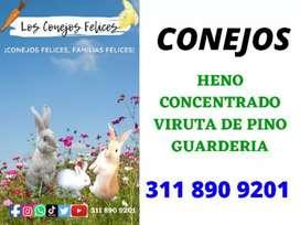 GUARDERÍA DE CONEJOS