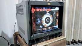 Sony PVM-14M2U monitor de video profesional RGB