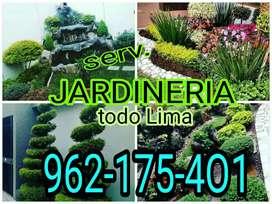 Servicio de jardinería,jardinero,jardín vertical,cascada,venta de plantas,fumigación,paisajista,topiario